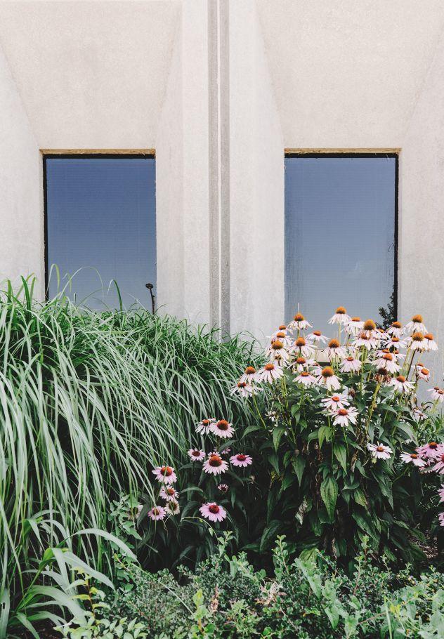 jardin de bajo mantenimiento3