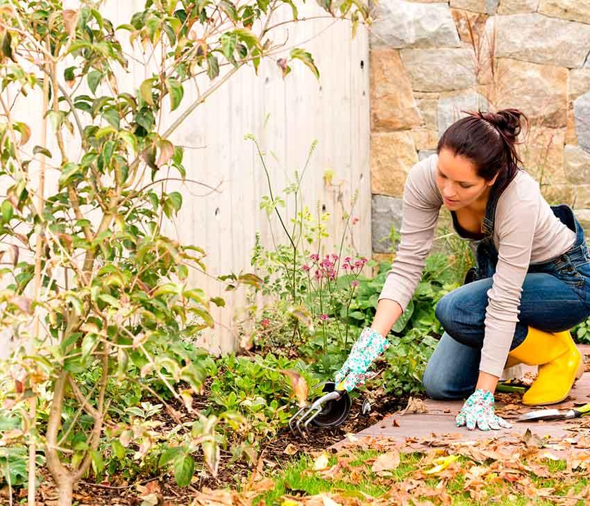 trabajos-de-jardín-de-otoño