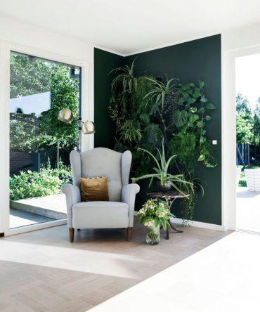 paredes o muros verdes