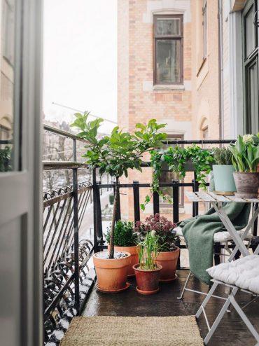 plantas balcon 1